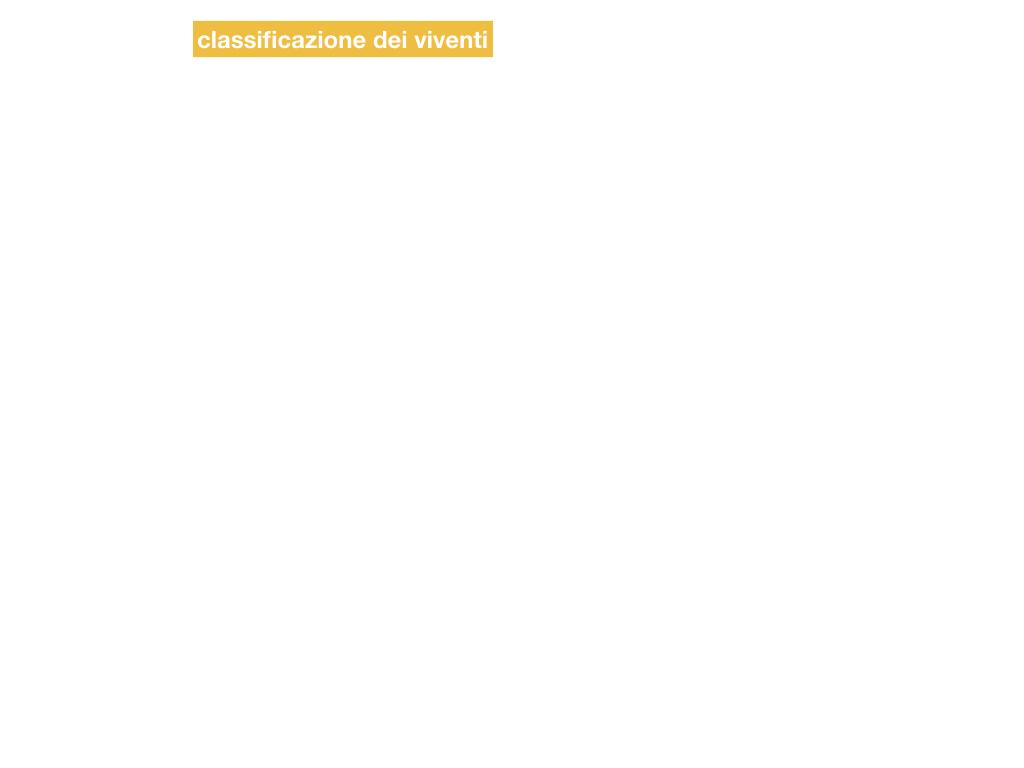 domini_regni_biodiversità_SIMULAZIONE.001