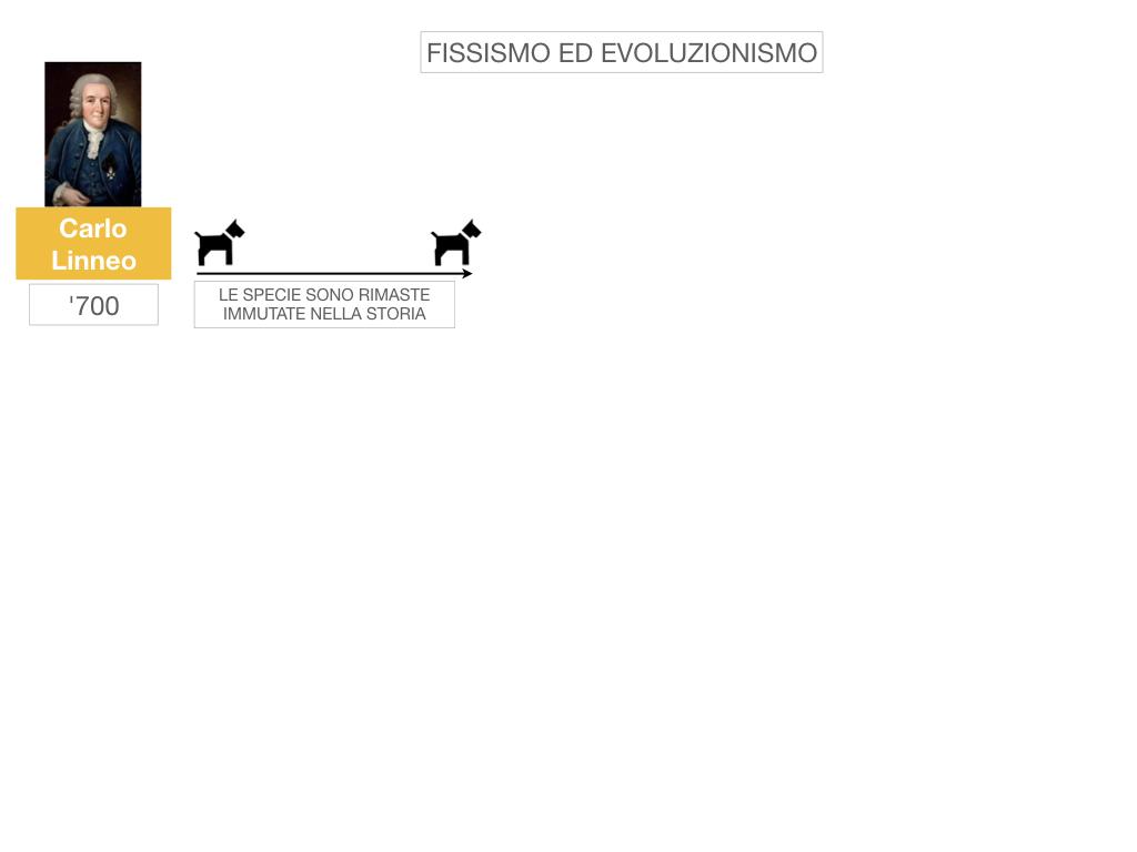 scienze_evoluzionismo_darwin_SIMULAZIONE.002