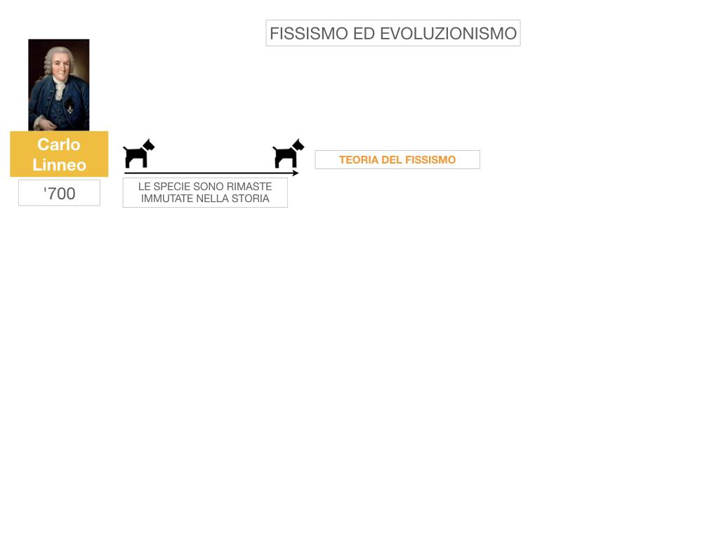 scienze_evoluzionismo_darwin_SIMULAZIONE.003