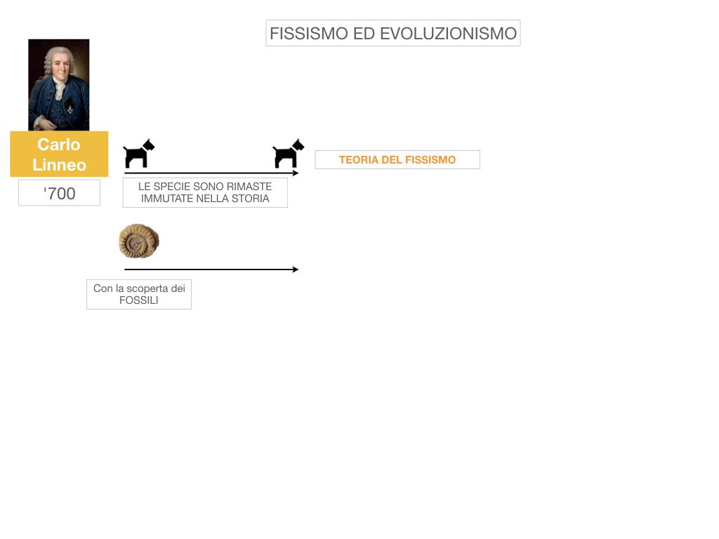 scienze_evoluzionismo_darwin_SIMULAZIONE.004