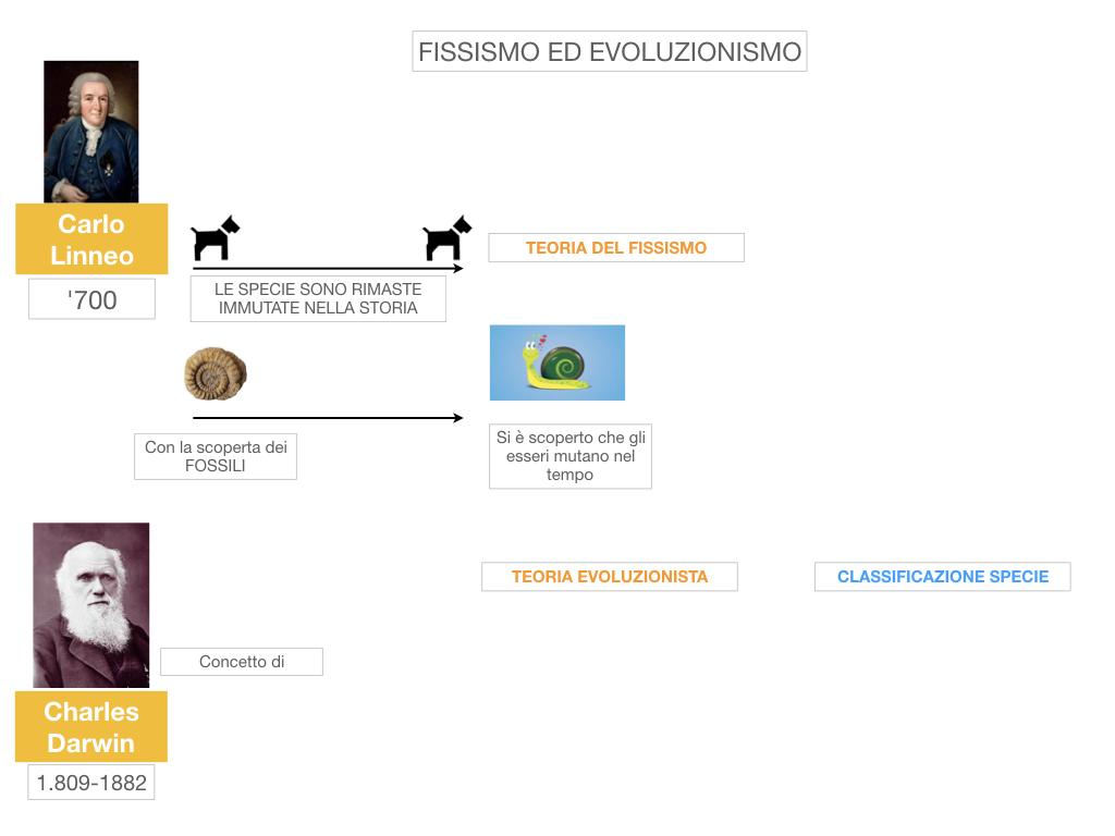 scienze_evoluzionismo_darwin_SIMULAZIONE.008