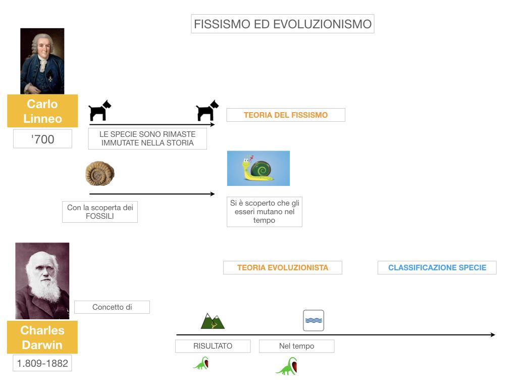 scienze_evoluzionismo_darwin_SIMULAZIONE.011