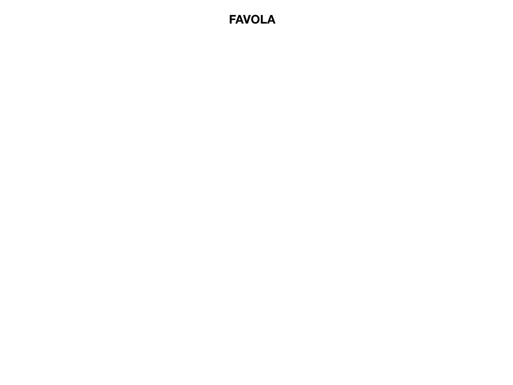 1.ANTOLOGIA_FAVOLA_FIABA_SIMULAZIONE .001