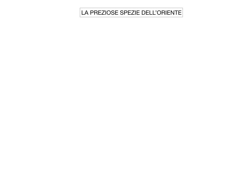 2. LA PENISOLA IBERICA E LE ESPLORAZIONI ATLANTICHE_SIMULAZIONE.066