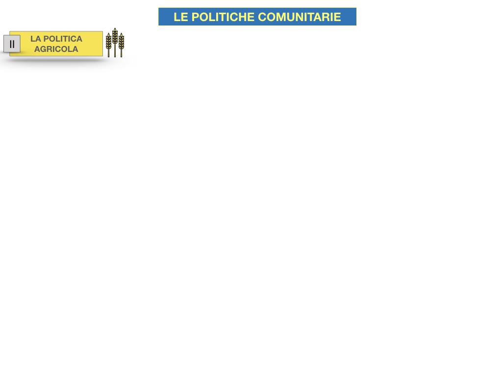 4. LE POLITICHE COMUNITARIE_SIMULAZIONE.030