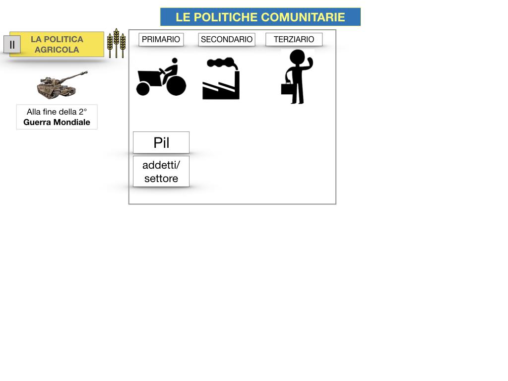 4. LE POLITICHE COMUNITARIE_SIMULAZIONE.035