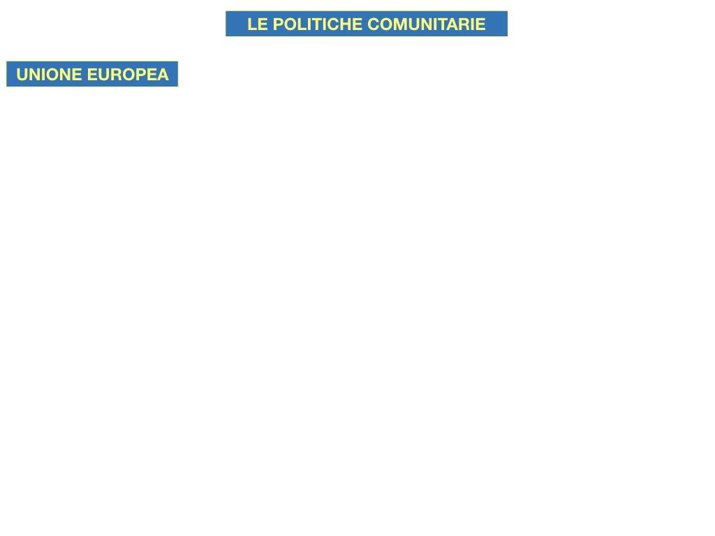 4. LE POLITICHE COMUNITARIE_SIMULAZIONE.045