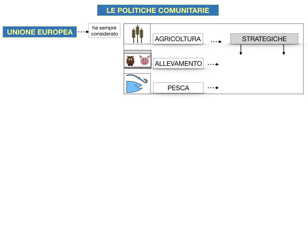 4. LE POLITICHE COMUNITARIE_SIMULAZIONE.049