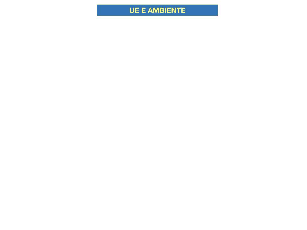 5. L'UNIONE EUROPEA E L'AMBIENTE_SIMULAZIONE.001