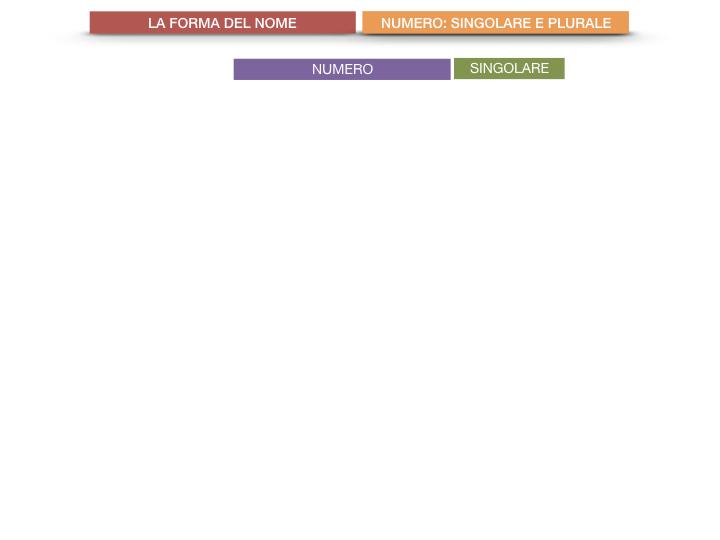 7. 2.GRAMMATICA_NOMI_FORMA_NUMERO_SIMULAZIONE.003