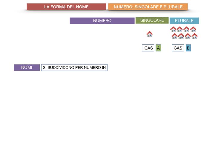 7. 2.GRAMMATICA_NOMI_FORMA_NUMERO_SIMULAZIONE.006