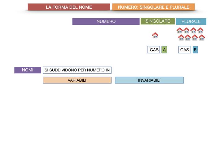 7. 2.GRAMMATICA_NOMI_FORMA_NUMERO_SIMULAZIONE.008