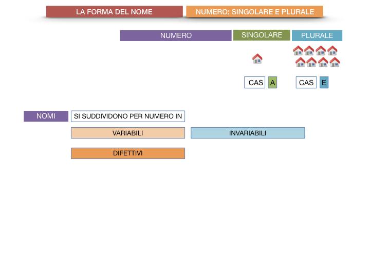 7. 2.GRAMMATICA_NOMI_FORMA_NUMERO_SIMULAZIONE.009