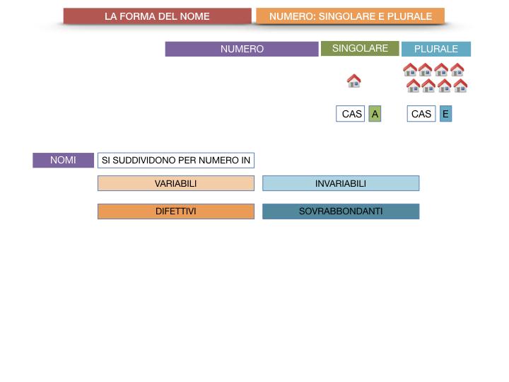 7. 2.GRAMMATICA_NOMI_FORMA_NUMERO_SIMULAZIONE.010