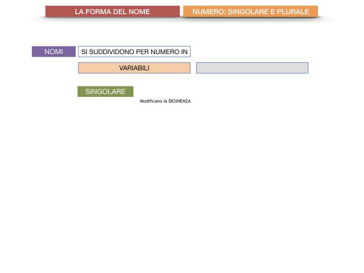 7. 2.GRAMMATICA_NOMI_FORMA_NUMERO_SIMULAZIONE.013