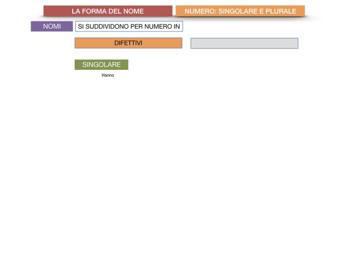 7. 2.GRAMMATICA_NOMI_FORMA_NUMERO_SIMULAZIONE.041