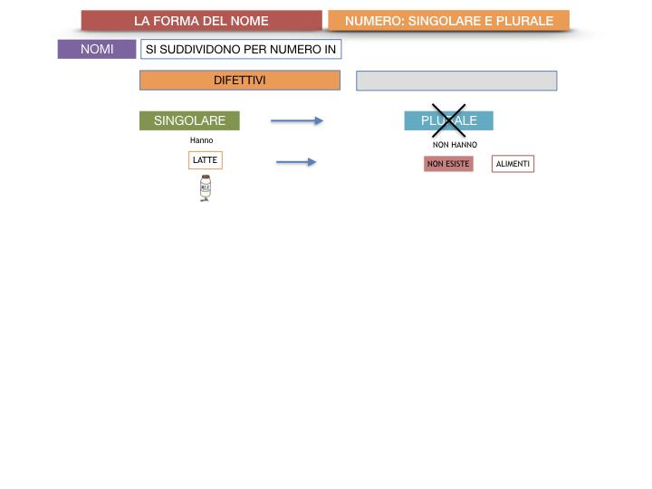7. 2.GRAMMATICA_NOMI_FORMA_NUMERO_SIMULAZIONE.044
