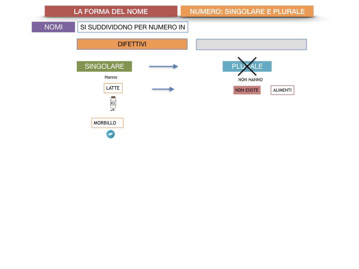 7. 2.GRAMMATICA_NOMI_FORMA_NUMERO_SIMULAZIONE.045