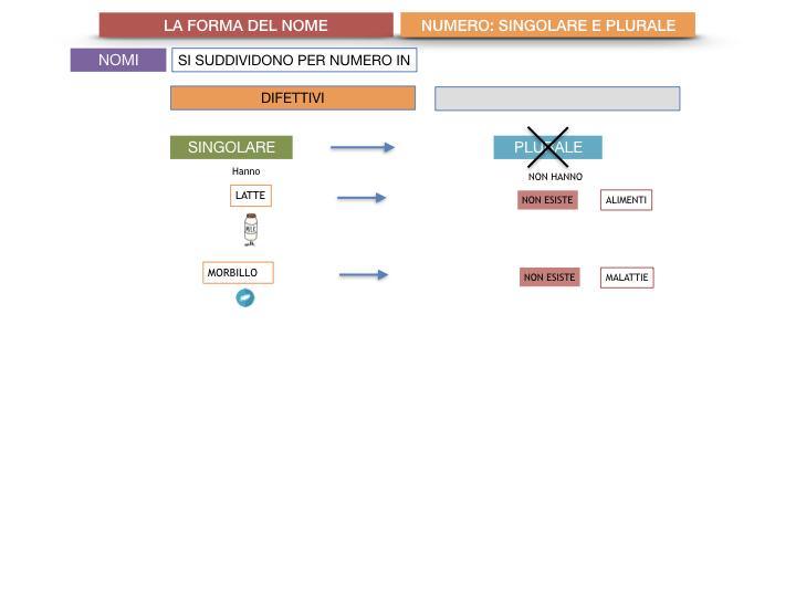 7. 2.GRAMMATICA_NOMI_FORMA_NUMERO_SIMULAZIONE.046