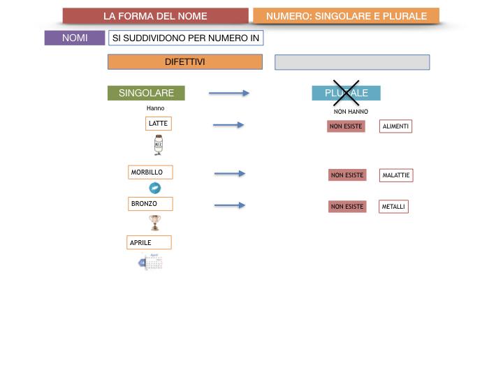 7. 2.GRAMMATICA_NOMI_FORMA_NUMERO_SIMULAZIONE.049