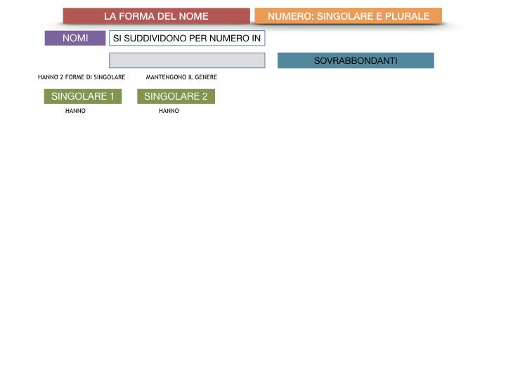 7. 2.GRAMMATICA_NOMI_FORMA_NUMERO_SIMULAZIONE.085