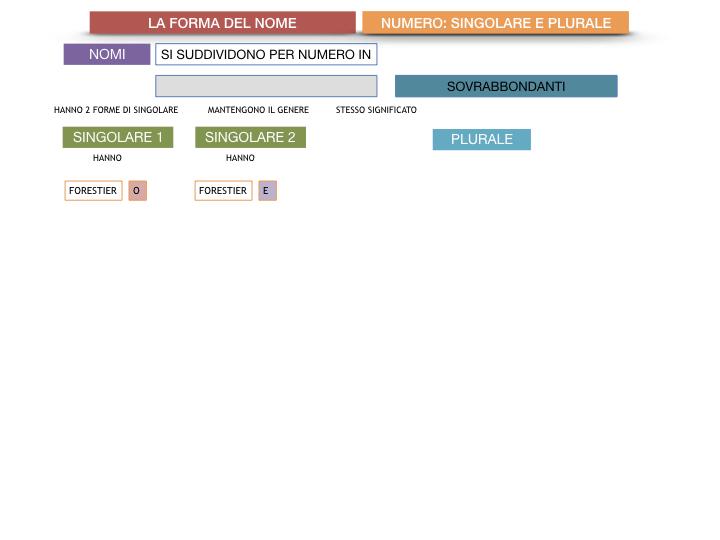 7. 2.GRAMMATICA_NOMI_FORMA_NUMERO_SIMULAZIONE.089