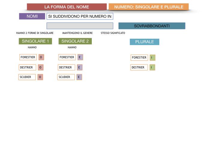 7. 2.GRAMMATICA_NOMI_FORMA_NUMERO_SIMULAZIONE.095