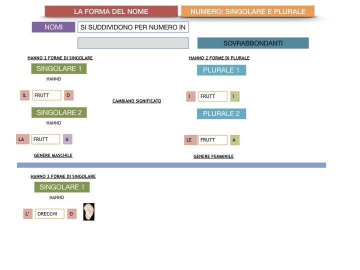 7. 2.GRAMMATICA_NOMI_FORMA_NUMERO_SIMULAZIONE.110