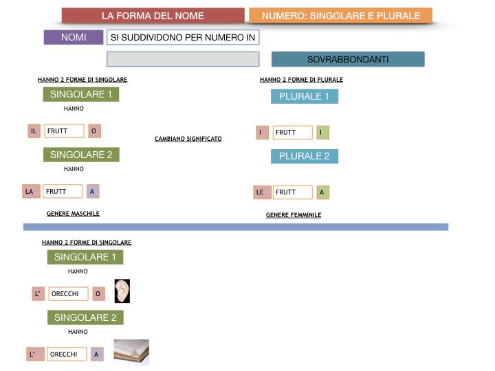 7. 2.GRAMMATICA_NOMI_FORMA_NUMERO_SIMULAZIONE.111