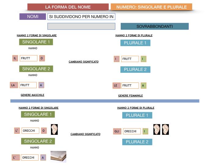 7. 2.GRAMMATICA_NOMI_FORMA_NUMERO_SIMULAZIONE.114