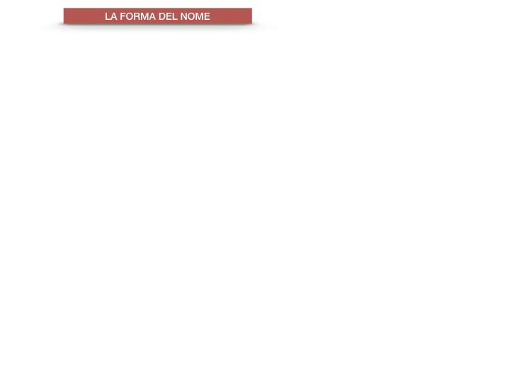 7.1.GRAMMATICA_NOMI_FORMA_GENERE_SIMULAZIONE.010