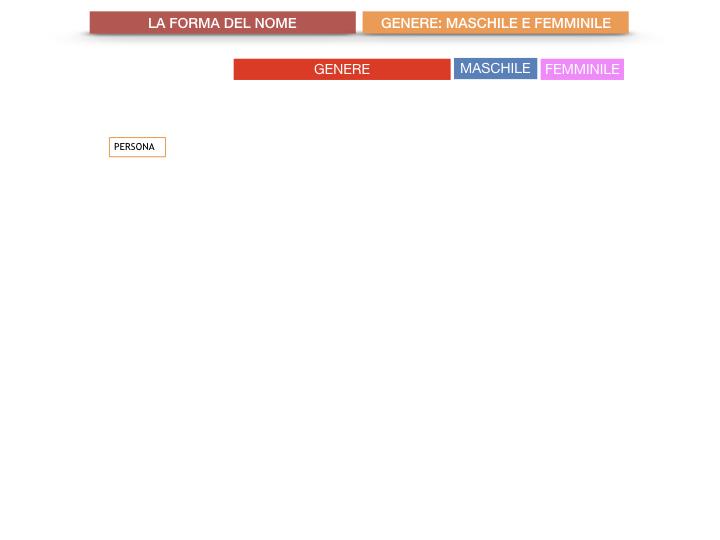 7.1.GRAMMATICA_NOMI_FORMA_GENERE_SIMULAZIONE.013