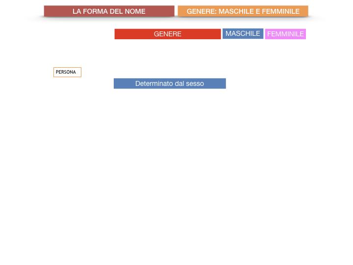 7.1.GRAMMATICA_NOMI_FORMA_GENERE_SIMULAZIONE.014