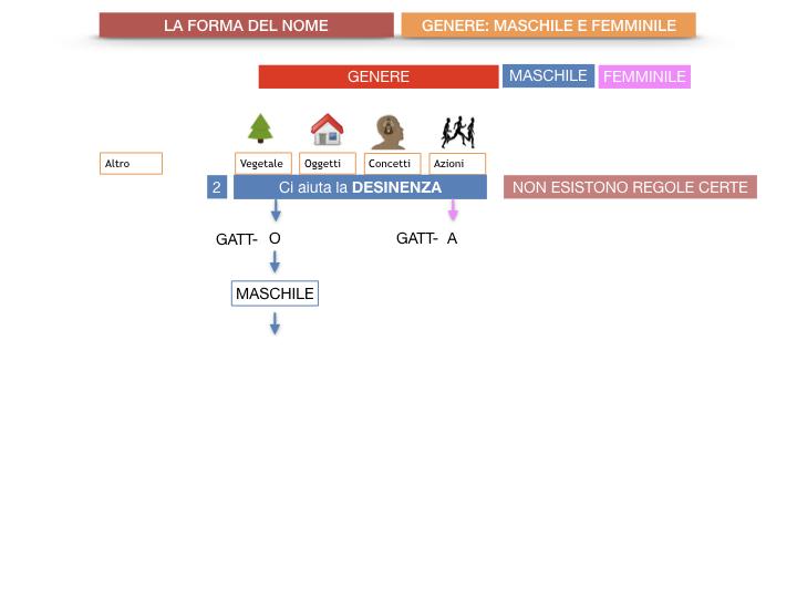 7.1.GRAMMATICA_NOMI_FORMA_GENERE_SIMULAZIONE.033
