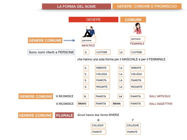 7.1.GRAMMATICA_NOMI_FORMA_GENERE_SIMULAZIONE.068