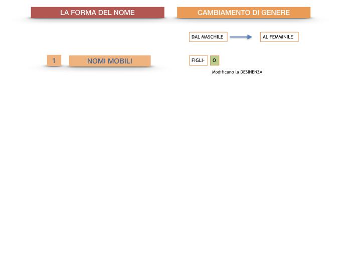 7.1.GRAMMATICA_NOMI_FORMA_GENERE_SIMULAZIONE.083