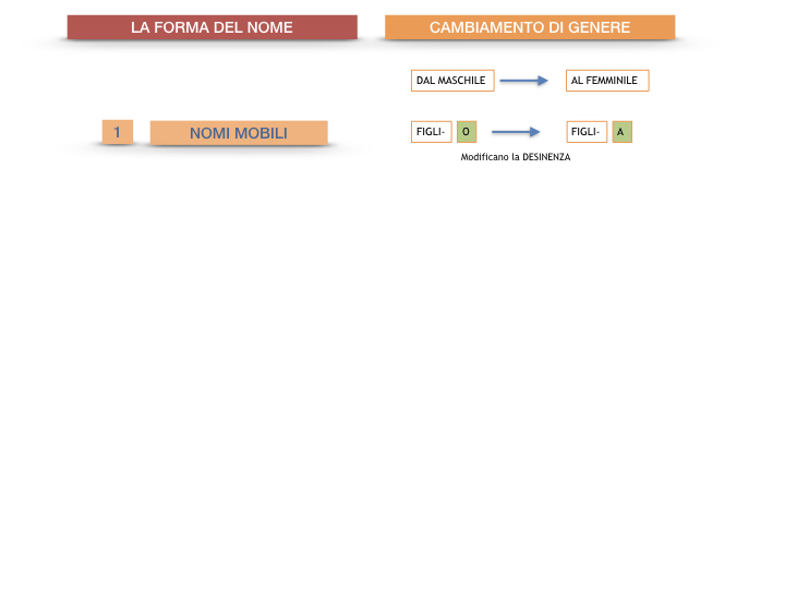 7.1.GRAMMATICA_NOMI_FORMA_GENERE_SIMULAZIONE.084