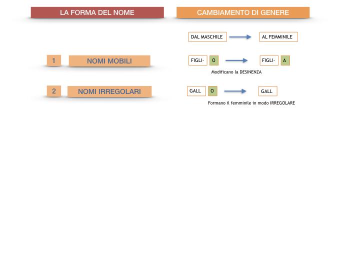 7.1.GRAMMATICA_NOMI_FORMA_GENERE_SIMULAZIONE.086