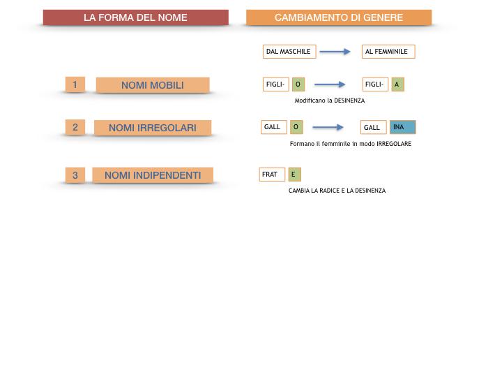 7.1.GRAMMATICA_NOMI_FORMA_GENERE_SIMULAZIONE.089