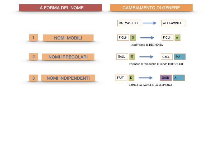 7.1.GRAMMATICA_NOMI_FORMA_GENERE_SIMULAZIONE.090