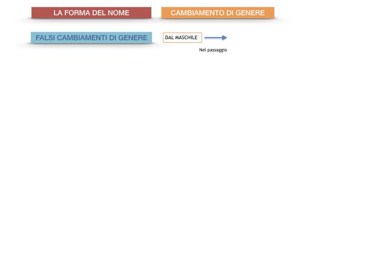 7.1.GRAMMATICA_NOMI_FORMA_GENERE_SIMULAZIONE.094