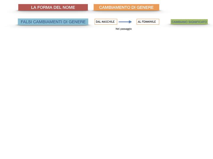 7.1.GRAMMATICA_NOMI_FORMA_GENERE_SIMULAZIONE.096