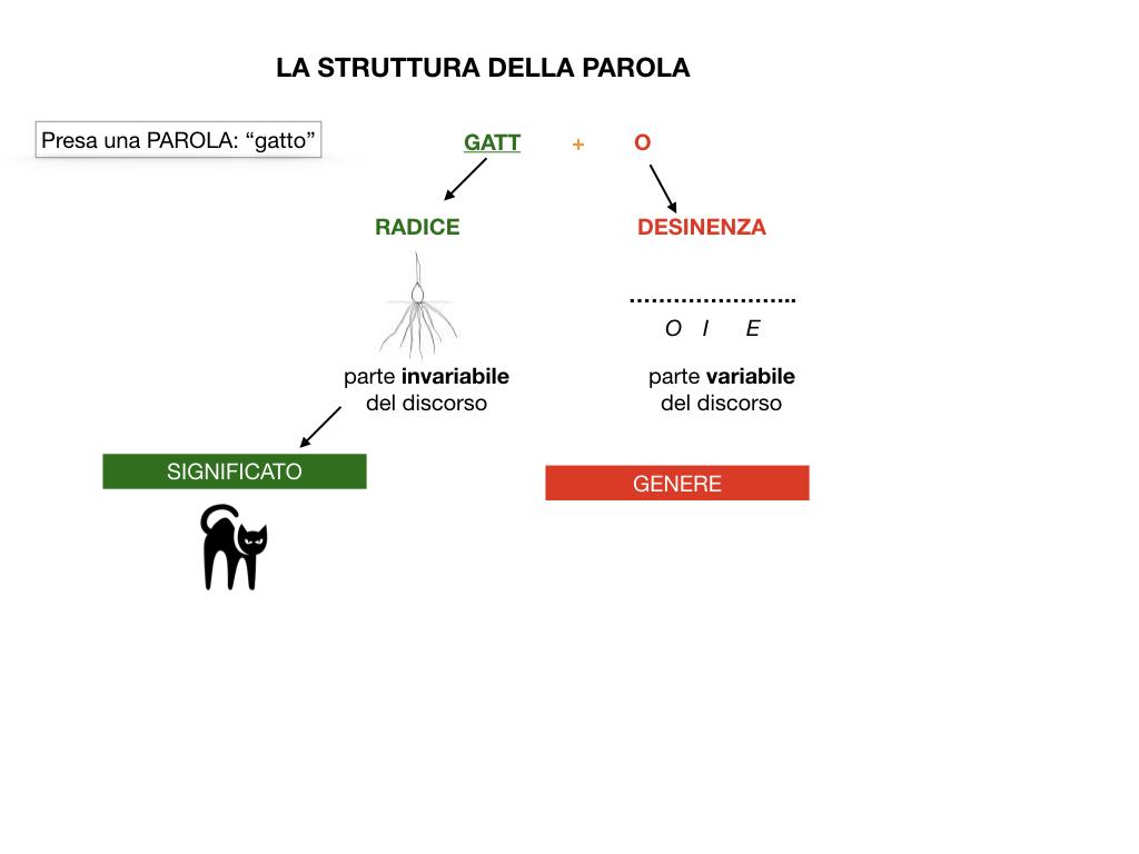 GRAMMATICA_1MEDIA_RADICE_DESINENZA_PREFISSO_SUFFISSO_SIMULAZIONE.009