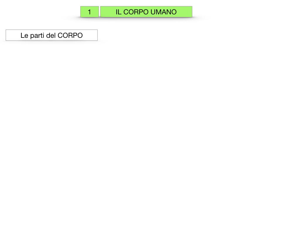 1.SCIENZE_IL CORPO UMANO_SIMULAZIONE.002