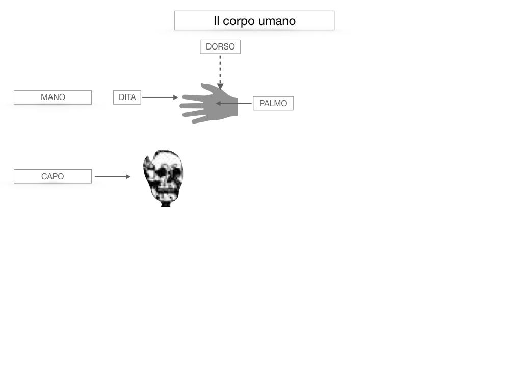 1.SCIENZE_IL CORPO UMANO_SIMULAZIONE.026