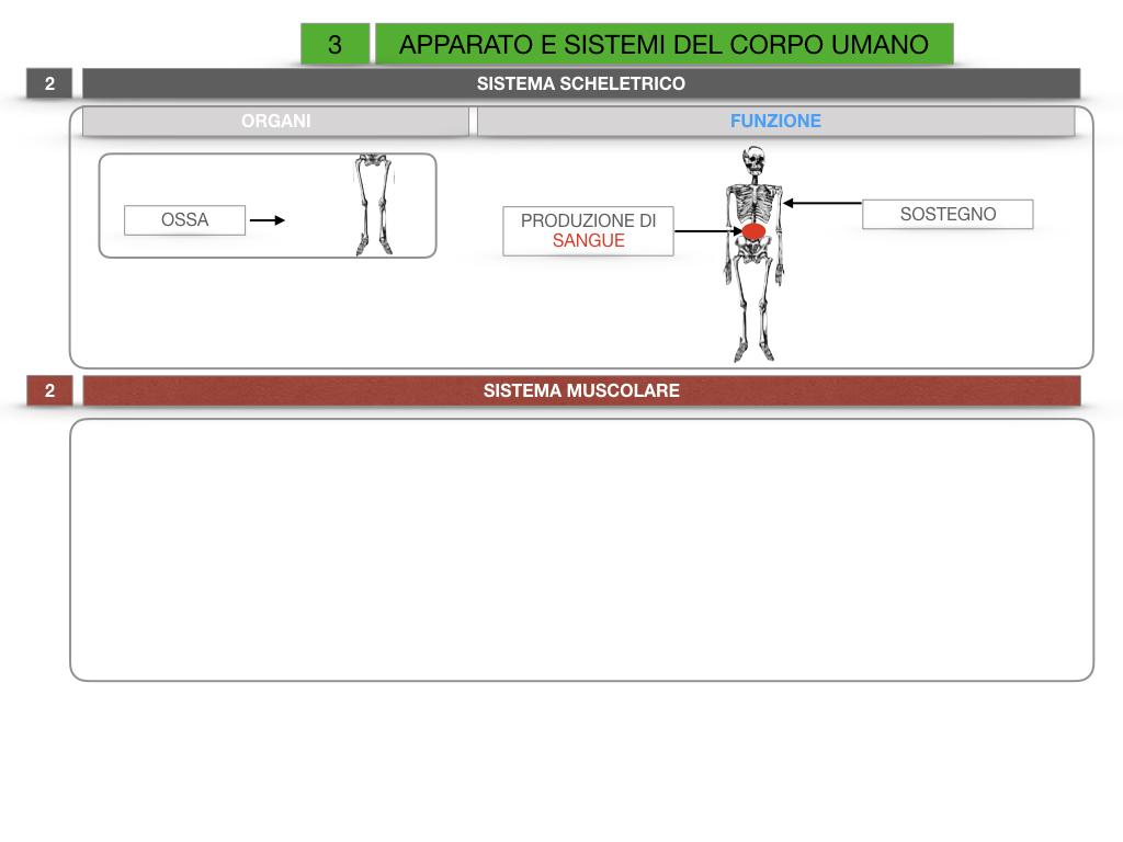 2. SCIENZE_APPARATI E SISTEMI_SIMULAZIONE.016