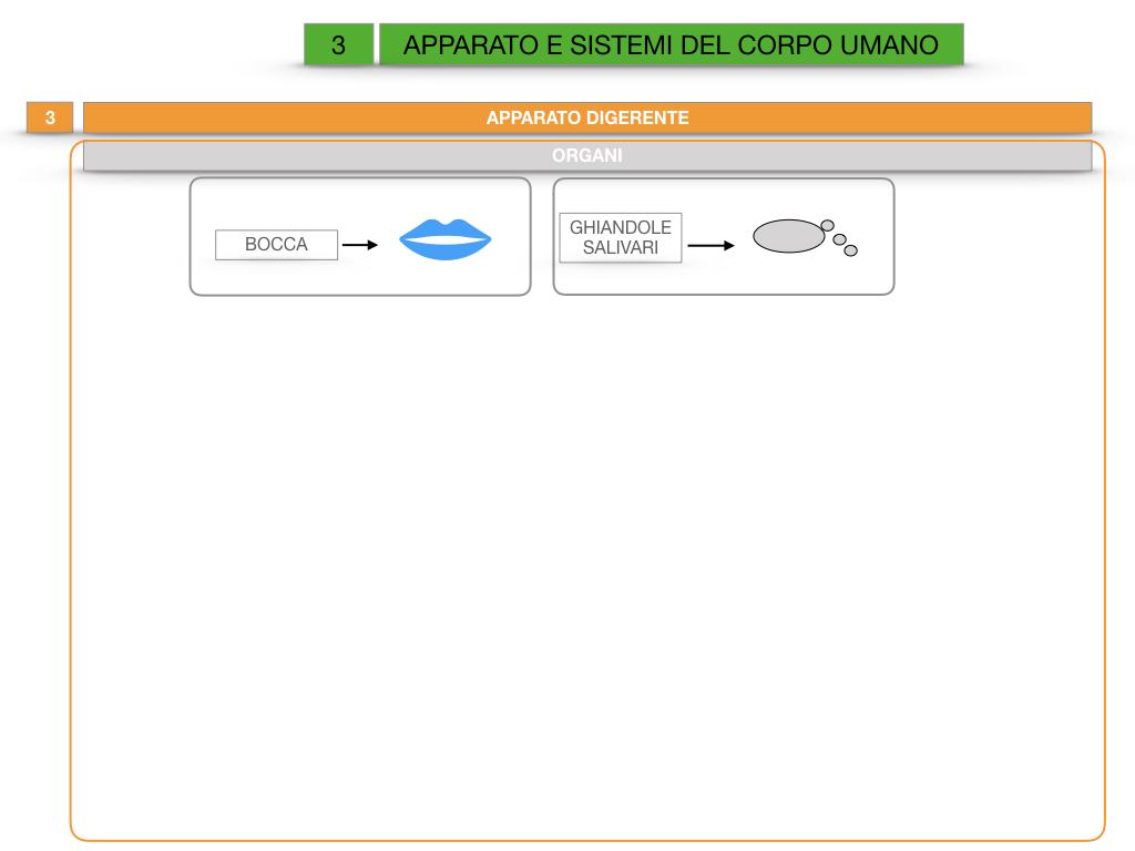 2. SCIENZE_APPARATI E SISTEMI_SIMULAZIONE.021