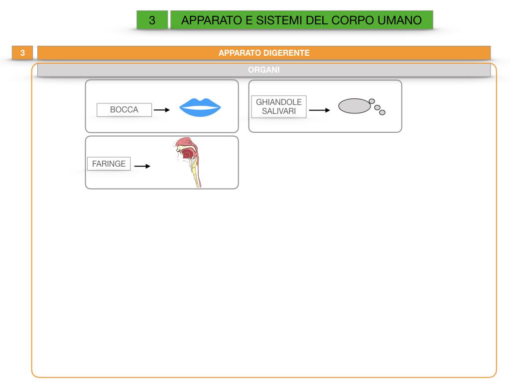 2. SCIENZE_APPARATI E SISTEMI_SIMULAZIONE.022