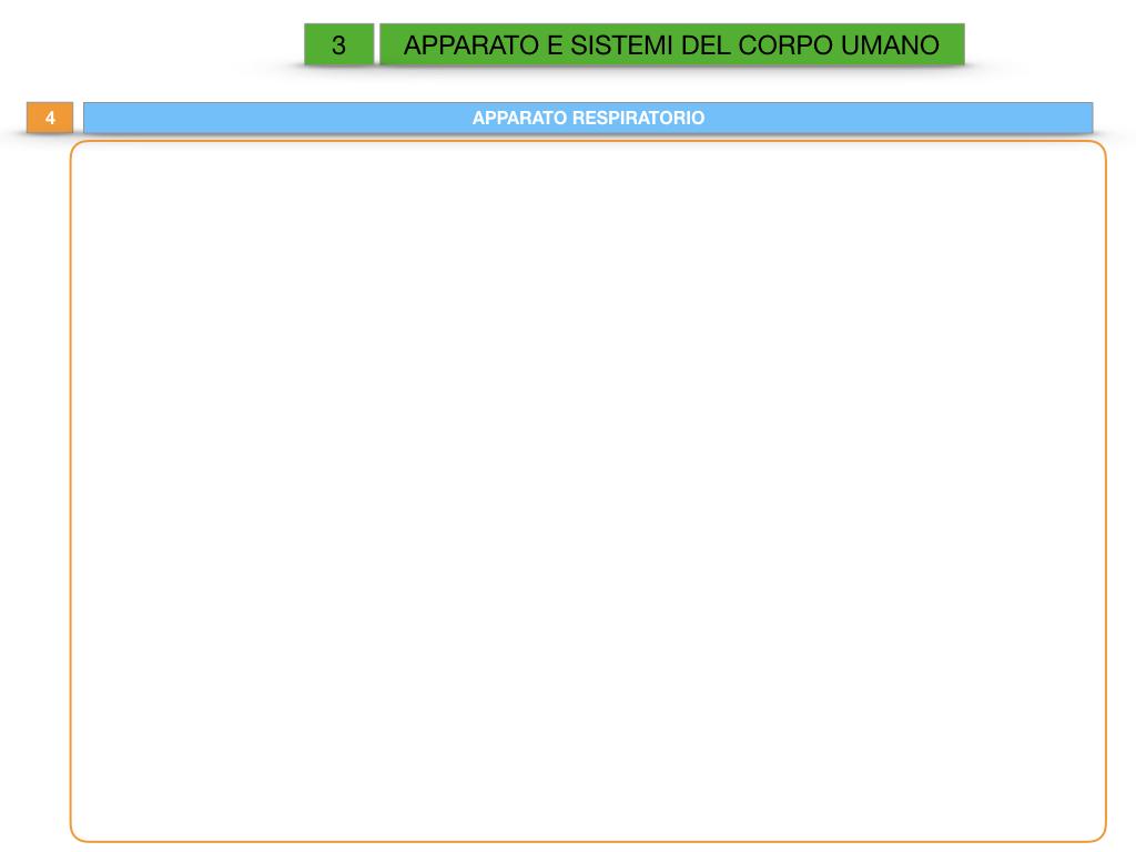 2. SCIENZE_APPARATI E SISTEMI_SIMULAZIONE.031