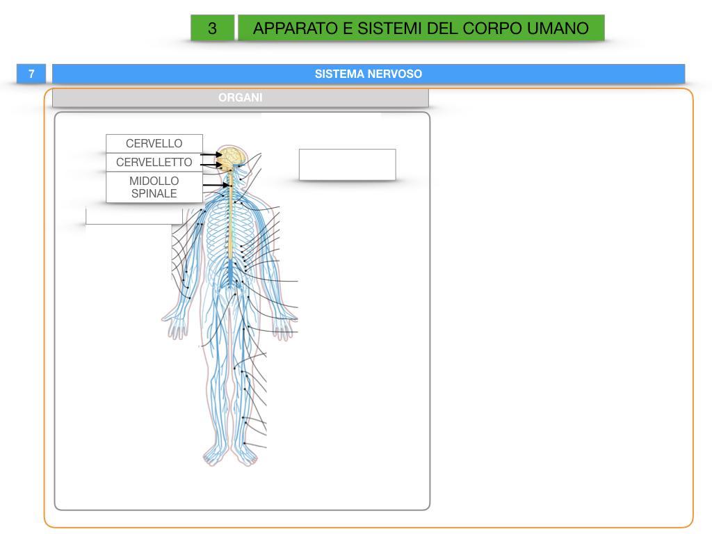 2. SCIENZE_APPARATI E SISTEMI_SIMULAZIONE.061